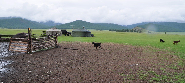 Getter Mongoliet