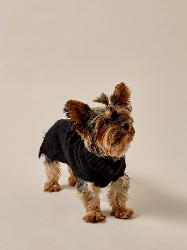 Thumbnail Dog Sweater